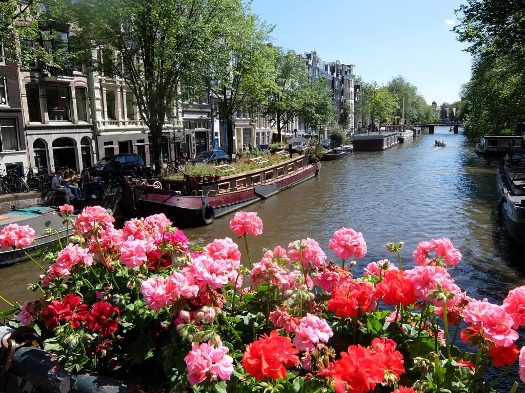 Gulligt i Amsterdam