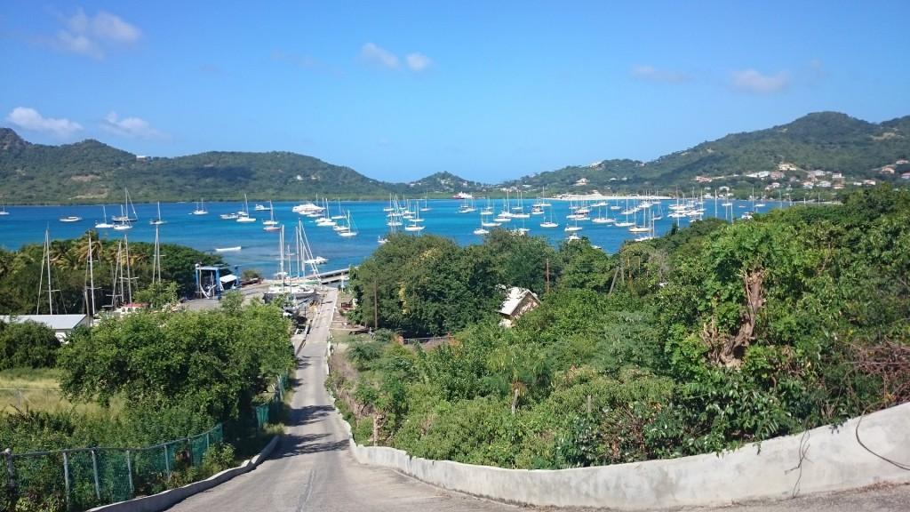 Utsikt över Tyrrel Bay.